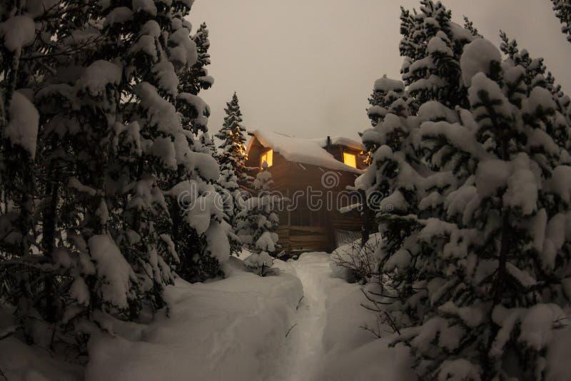 Abrigue o chalé durante uma queda de neve na floresta do inverno das árvores no nig imagens de stock royalty free