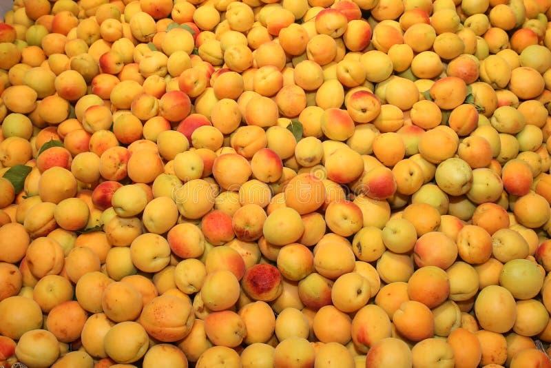 abrikoos royalty-vrije stock afbeeldingen
