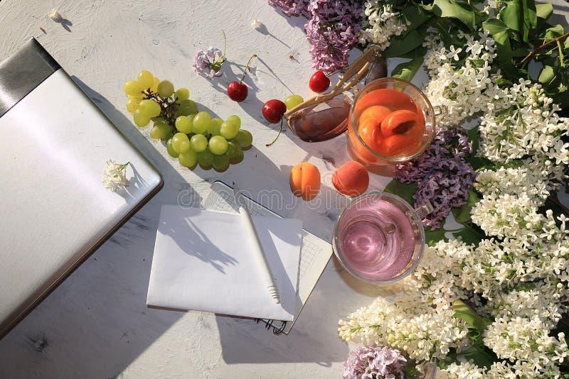 Abrikoos en kersen het sap, de abrikozen, de kersen en de druiven op een zonnige lijst naast een notitieboekje en laptop, kopiëre stock afbeelding