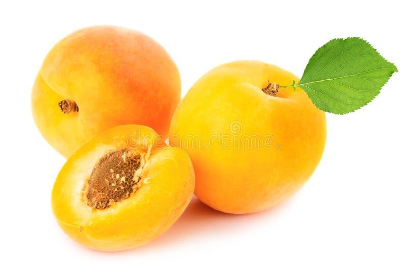 abrikozen royalty-vrije stock afbeelding