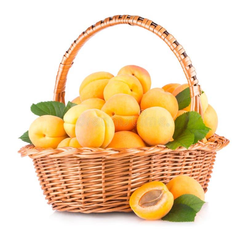 abrikozen stock afbeelding