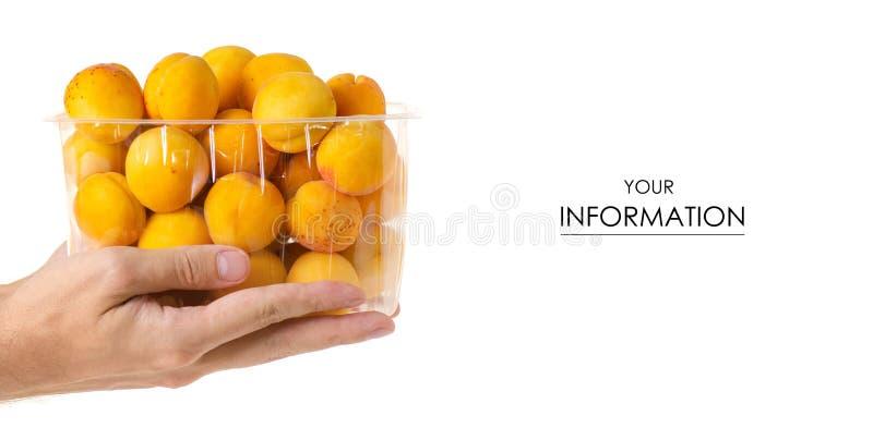 Abrikozen in een in hand patroon van het mand oranje fruit stock afbeeldingen