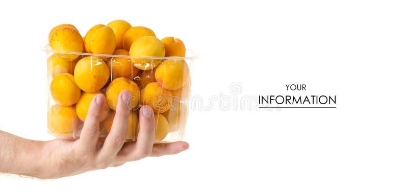 Abrikozen in een in hand patroon van het mand oranje fruit royalty-vrije stock fotografie