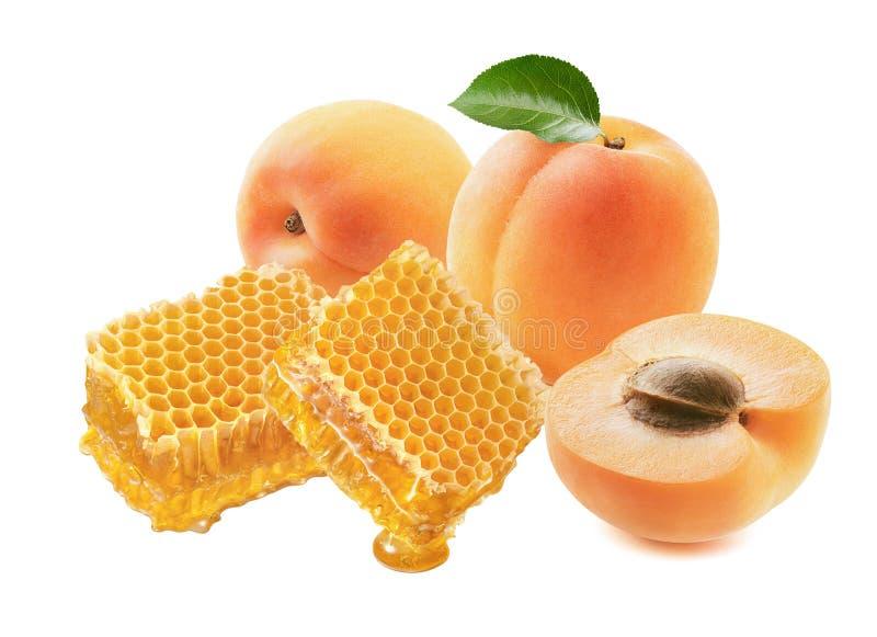 Abrikozen en honingraat geïsoleerd op witte achtergrond stock afbeeldingen