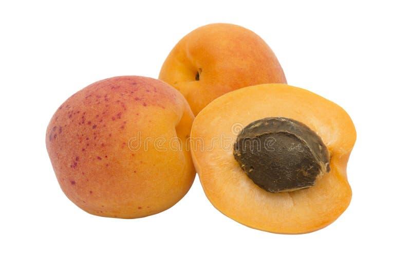 Abrikozenfruit stock fotografie