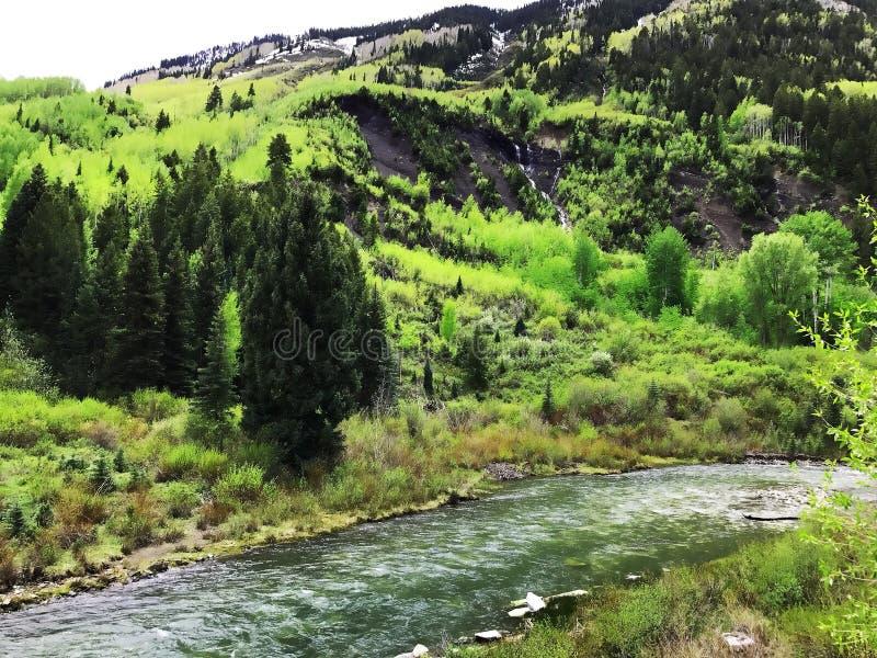 abril nas Montanhas Rochosas fotografia de stock royalty free