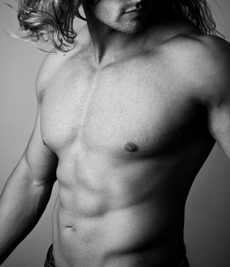 Abs de um homem muscular fotografia de stock royalty free