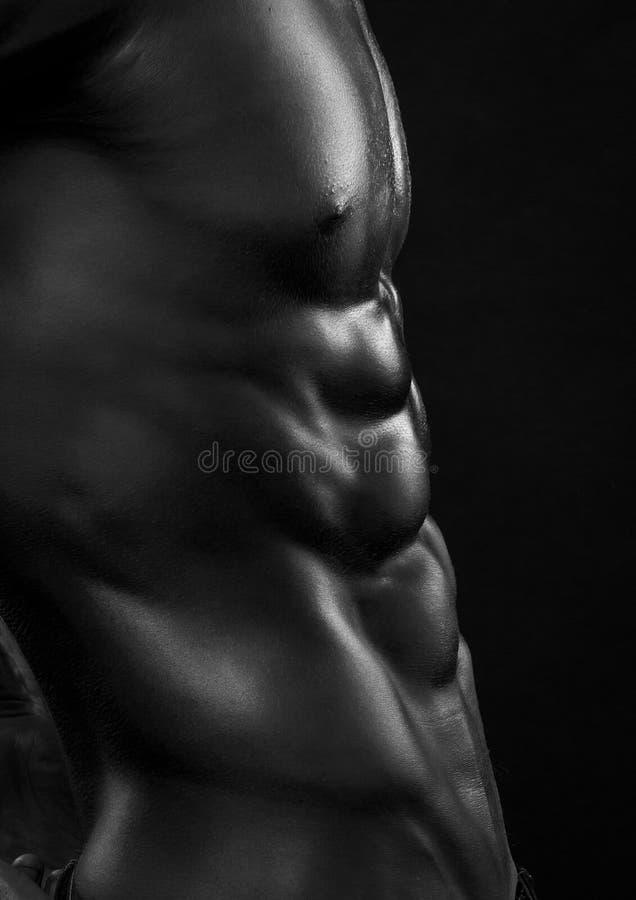 ABS maschio fotografia stock
