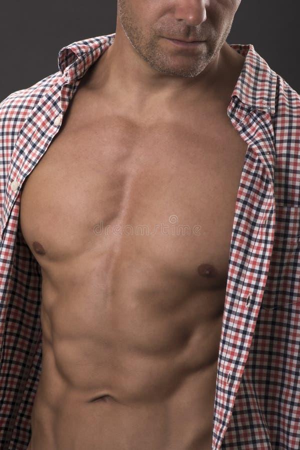 ABS y torso masculinos atractivos estupendos imagen de archivo