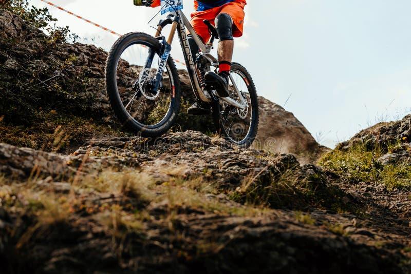 abschüssiges Gebirgsradfahren des Fahrradradreiters stockfotografie