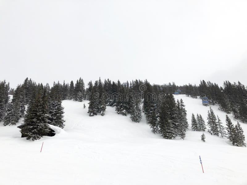 Absch?ssiger Steigungs- und apresski und sch?ne Ansicht der Alpenberge stockbild