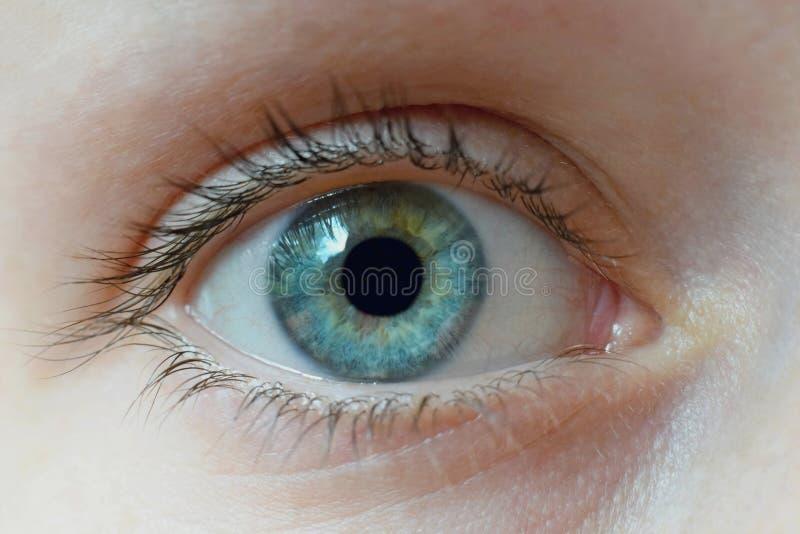 Abschluss des menschlichen Auges oben lizenzfreie stockbilder