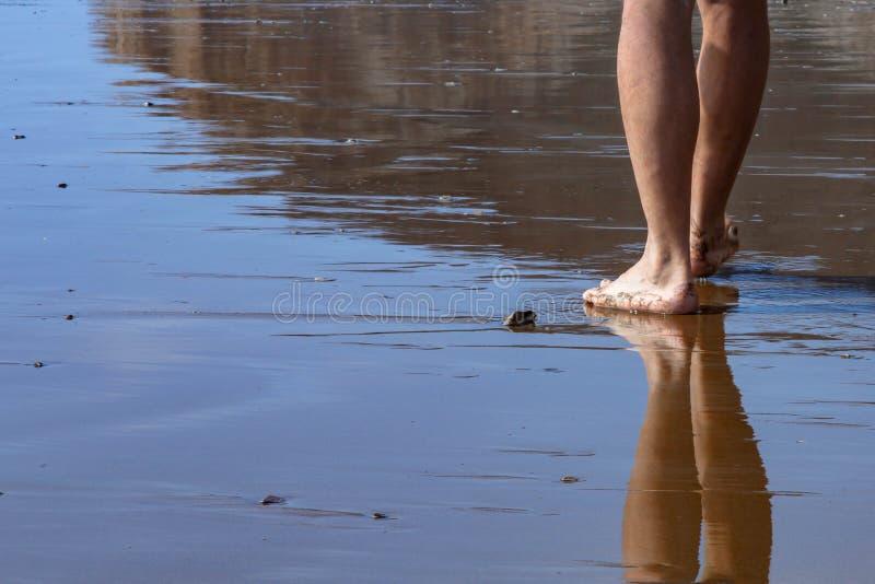 Abschluss herauf den Mann des niedrigen Winkels, der auf Strand geht stockfotografie
