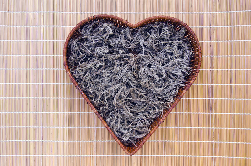 Absinth wormwood (Artemisia absinthium) in heart form basket royalty free stock photo