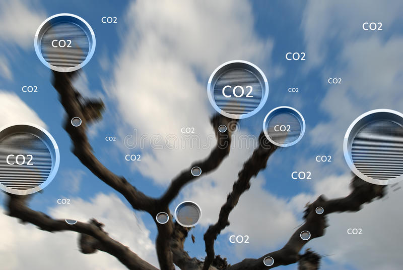 absorberande koldioxidbegrepp för träd royaltyfri foto