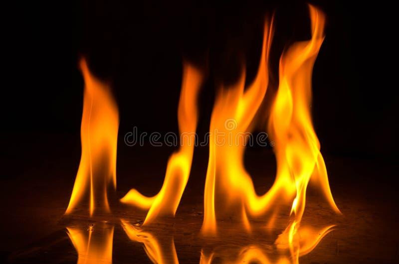 Abstact墙纸在黑背景的火火焰 免版税图库摄影