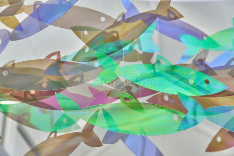 Abstact tło obwieszenie ryba holograficzni modni kolory obrazy royalty free