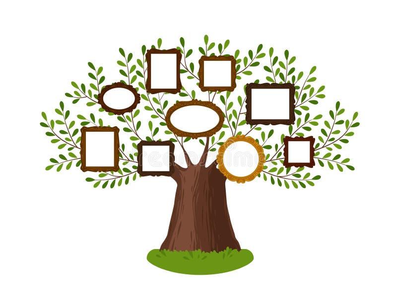 Abstammungsstammbaum mit Bilderrahmen Stammbaum, Genealogie, Abstammung, Dynastienkonzept Auch im corel abgehobenen Betrag lizenzfreie abbildung