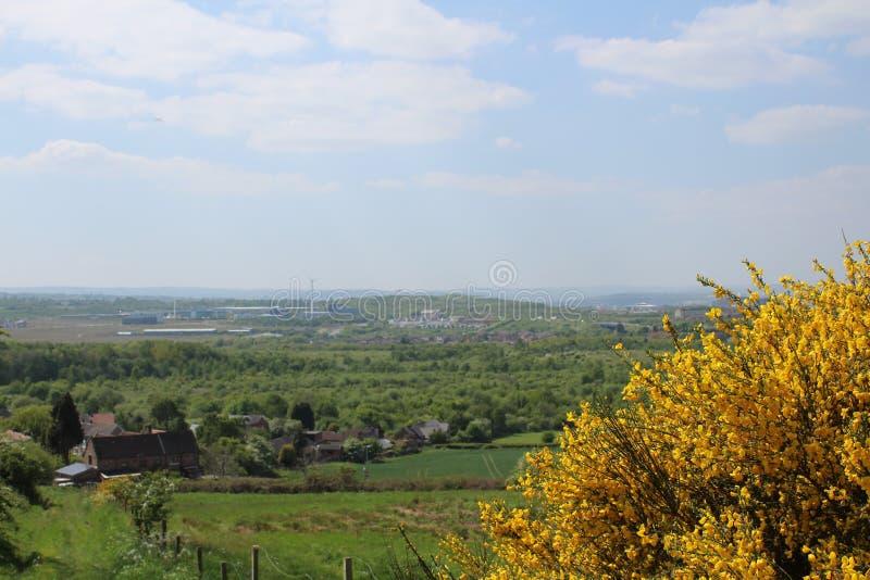 Abstands-Landschaft Treeton lizenzfreie stockfotografie