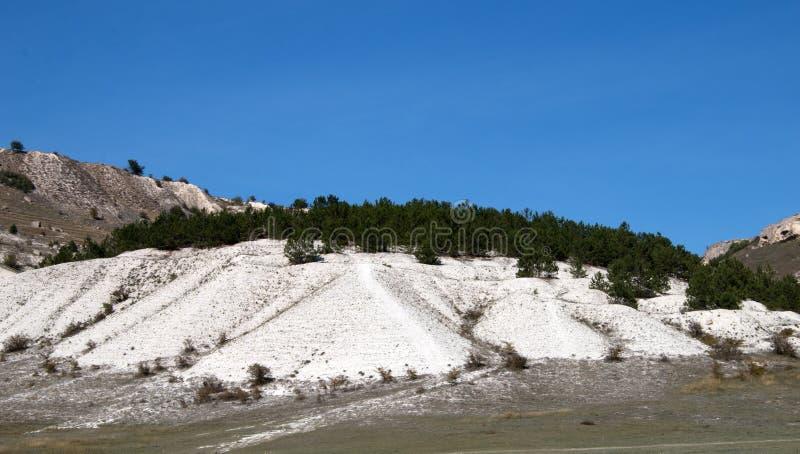 Abstiege umfasst mit Kiefernwald, calciphilous Steppenvegetation stockfotos