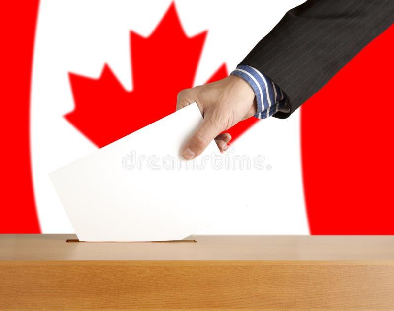 Abstimmung stockbilder