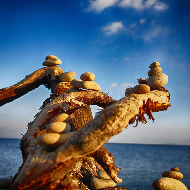 Abstracción por el mar, consistiendo en piedras y ramas fotografía de archivo libre de regalías