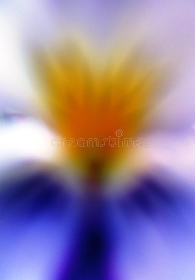 Abstract angel like flower viola tricolor royalty free illustration