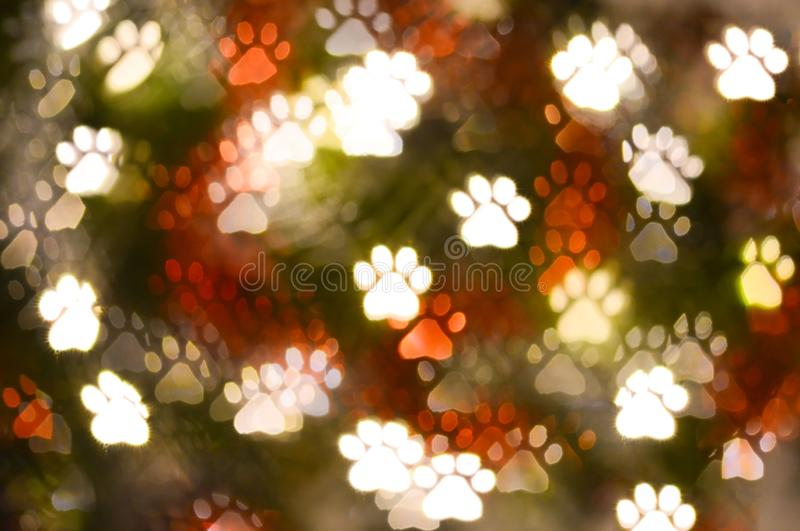 Abstract animal paw print shape bokeh for background. Abstract animal paw print shape bokeh for texture background beautiful blink blur blurred bright brilliant stock photos