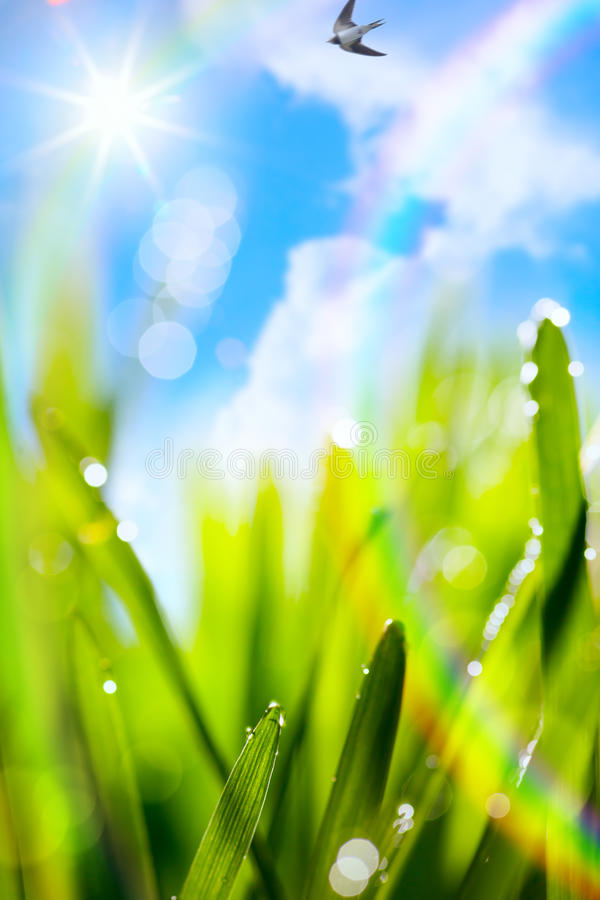 Abstract art natural spring blur green background stock image