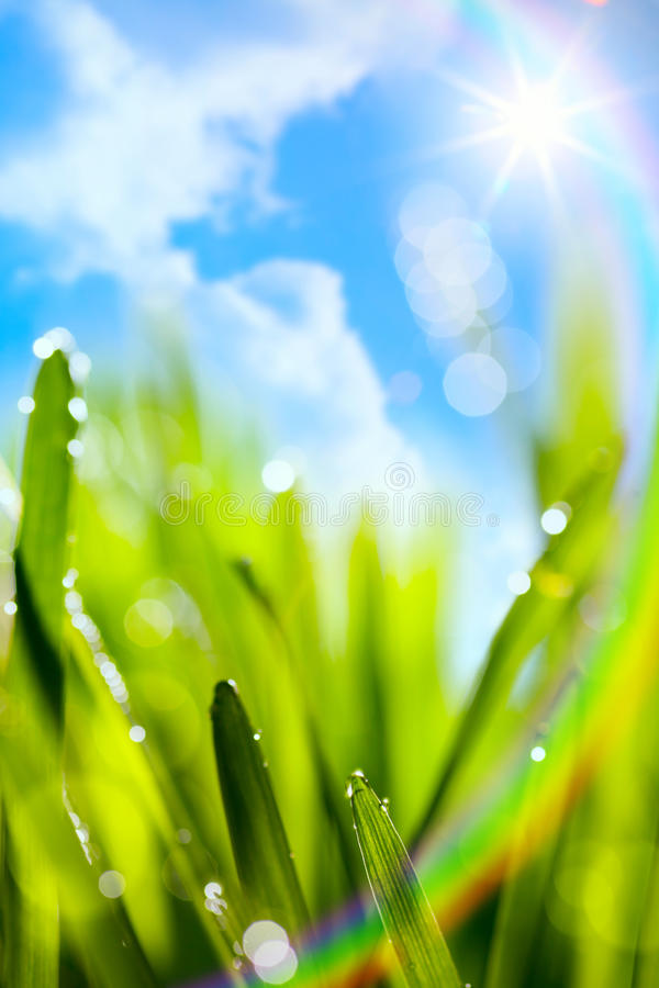 Abstract art natural spring green background with rainbow royalty free stock image