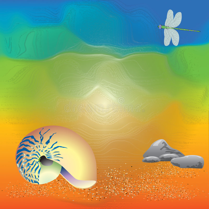 Free Abstract Art Of Shell On The Beach Stock Images - 5983774