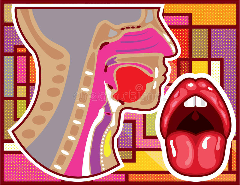 Cross Section Of Nose And Throat Stock Vector