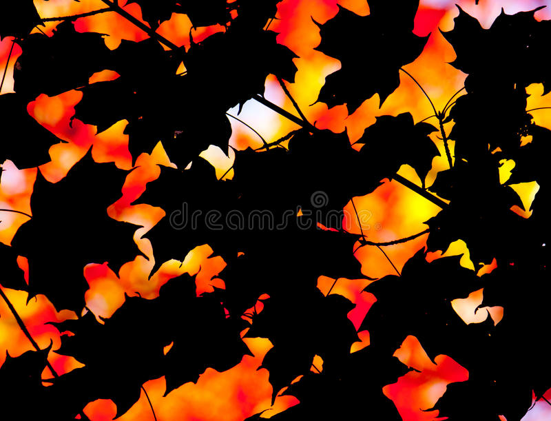 Download Abstract Autumn Composition Stock Image - Image: 27092247