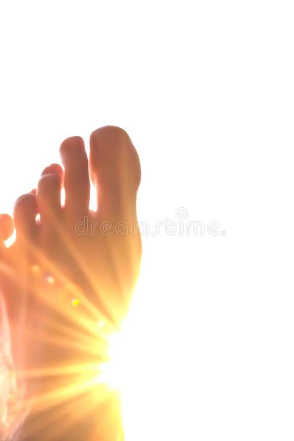 The sun through the toes. Abstract,background,beautiful,blue,body,bright,calm,concept,death,eternity,finger,fingers,god,heaven,human,isolated,light,love,nature royalty free stock photo