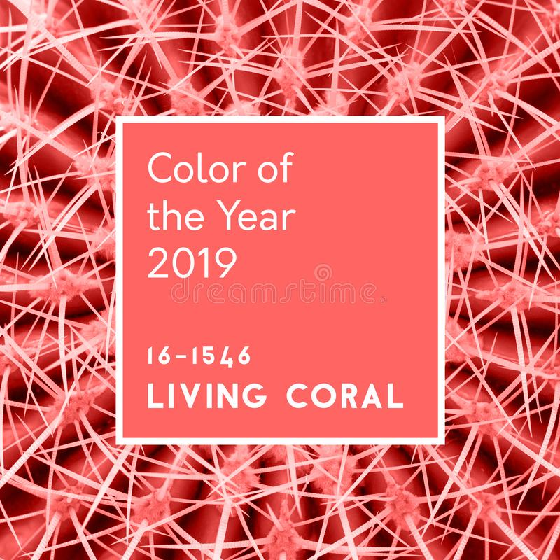 Inscription Living Coral color of the Year 2019 on Cactus Abstract hot summer background. stock illustration