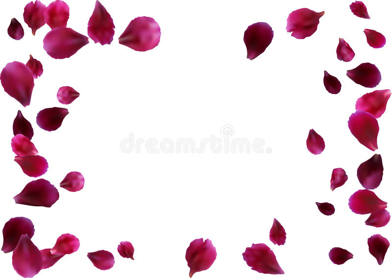 Abstract background with flying pink rose petals. Vector illustration isolated on a background. royalty free illustration