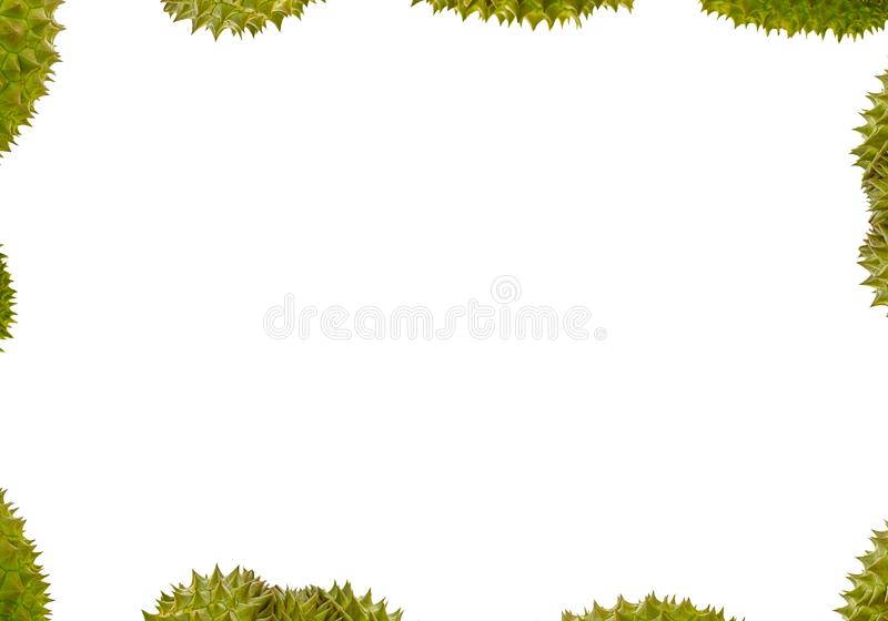 Abstract background frame border group of durian with green prickly peel fruit part, decoration of postcards eco style. Menu royalty free stock image
