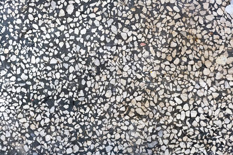 Abstract background. Gray concrete floor with white stone chips. Smooth polished surface.  stock photos