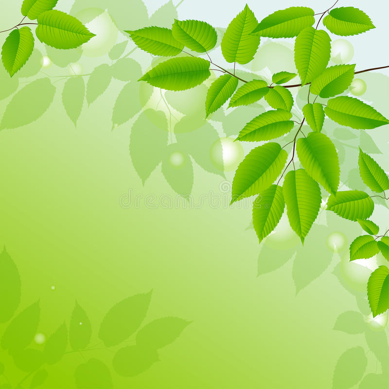 Abstract background with green leaves. royalty free illustration