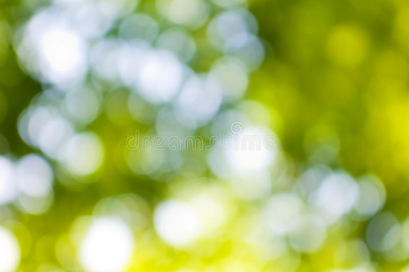 Abstract background image of green vegetable royalty free stock images