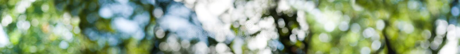 Abstract background image of green vegetable stock images