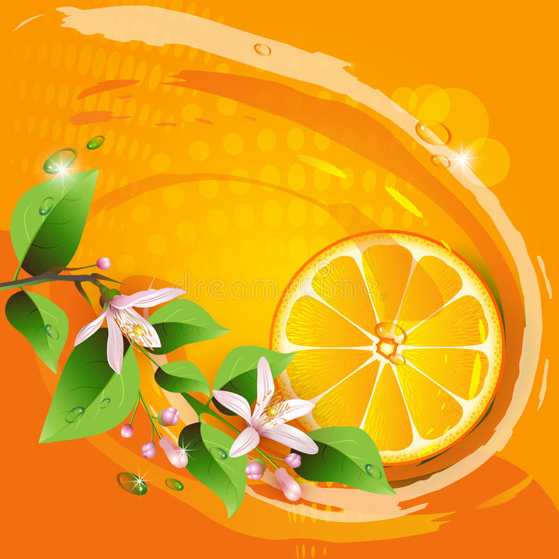 Abstract Background With Juicy Slice Stock Image