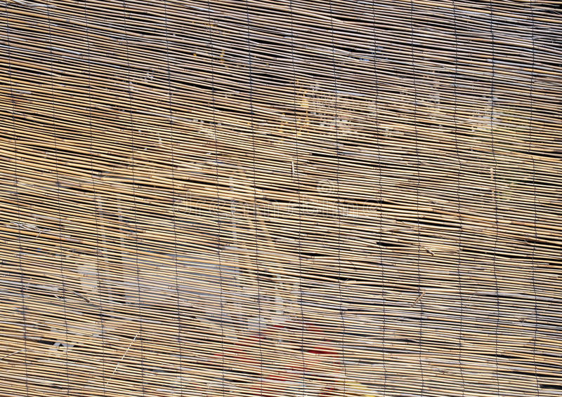 Abstract background of large bamboo canes royalty free stock photography