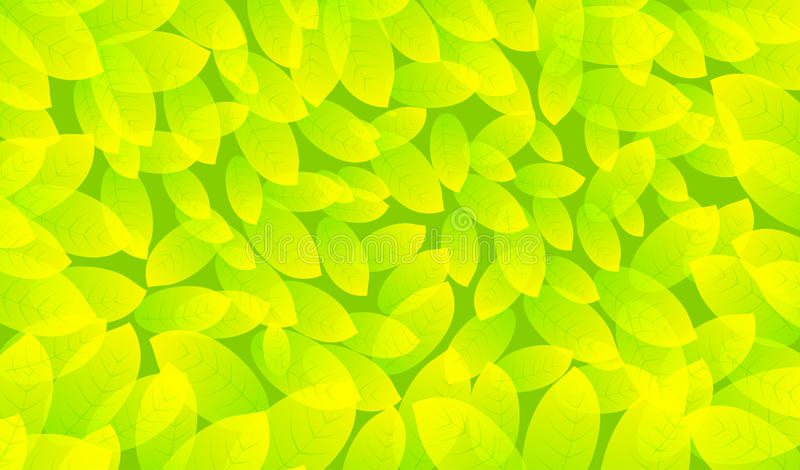 Abstract background from the leaves. Vector illustration stock illustration
