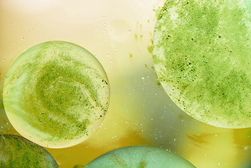 Abstract background with oil bubbles on yellow and green water surface royalty free stock photos
