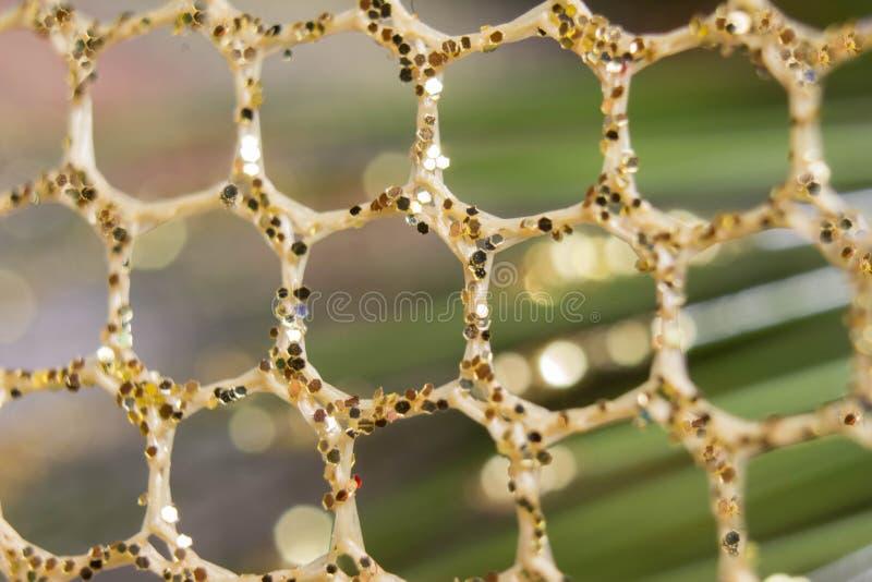 Abstract background photography. Plexus futuristic fantasy royalty free stock image