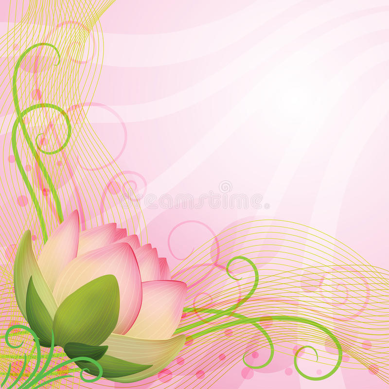 Abstract background pink lotus flower stock illustration