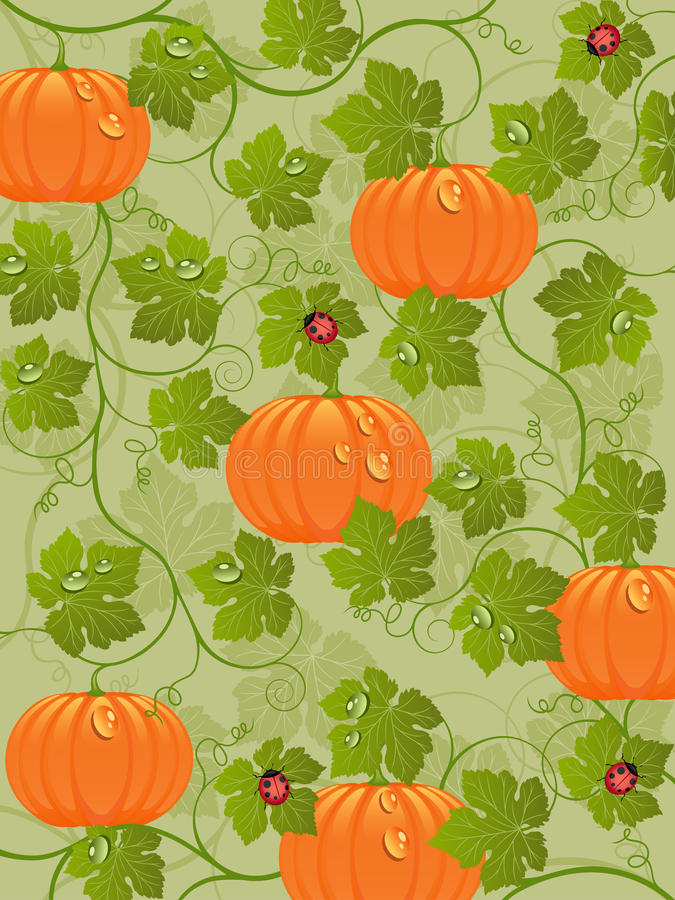 Download Abstract Background With A Pumpkin Stock Vector - Illustration of plant, nature: 20858514