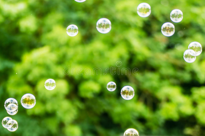 Abstract background. Soap bubbles on the blur nature.  stock photo