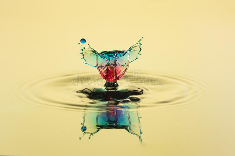 Abstract background of splash of color water, collision of colored drops. The concept art stock photography